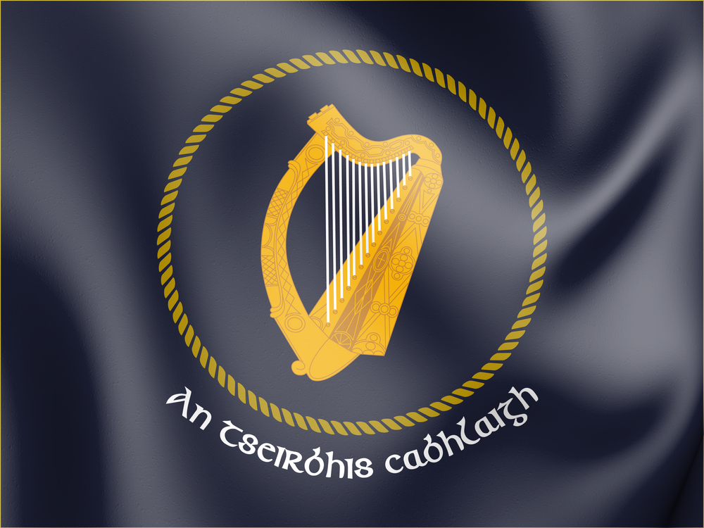 Irish Naval Service